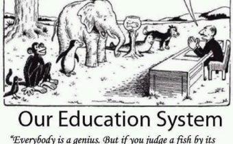 Όλοι μπορούμε να γίνουμε «ιδιοφυίες» με τη Διαφοροποιημένη Διδασκαλία!